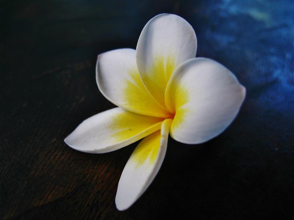 Bali-Island-of-the-Gods